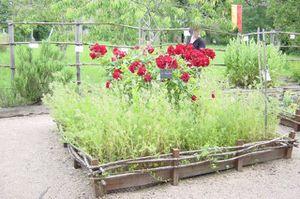 Vues sur jardins
