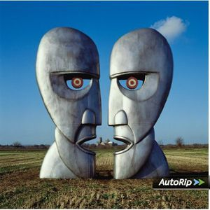 Pink Floyd: The Division Bell - 20Th Anniversary Deluxe Editions ( in vinile)