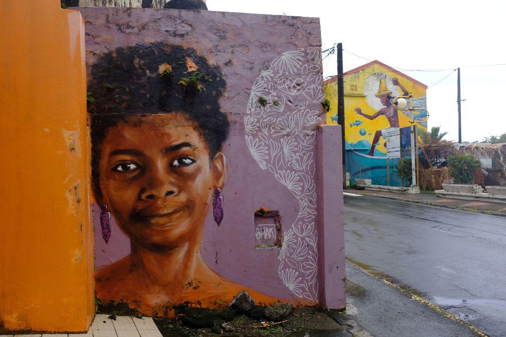 Ici, un regard gourmand sur la plage de la Tartane, au Lorrain, un message fort à propos et plein d'intuition d'Aimé CESAIRE sur le devenir de notre société, une ode à l'Amour, une charmante demoiselle au regard plein de douceur et un clin d'oeil Afro dans les rues de Fort de France.