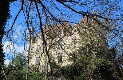 Le château du Hamel