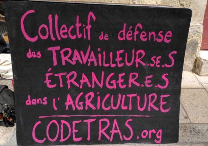 20210920 Travailleurs saisonniers dans l'agriculture des Bouches du Rhône (suite)