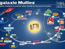 Grâce à Macron, la famille Mulliez rachète Alinéa qu'elle avait placée en liquidation judiciaire