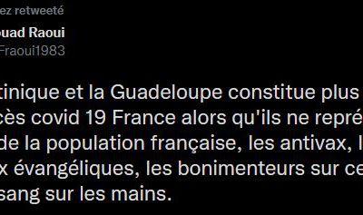 La Martinique et la Guadeloupe constitue plus du tiers des décès covid 19 France