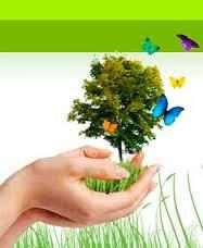 Une grande nouvelle pour la naturopathie !