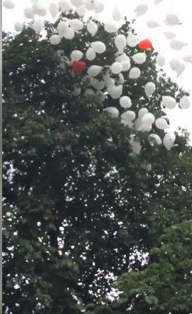 Lâcher de ballons blancs à Goring  -