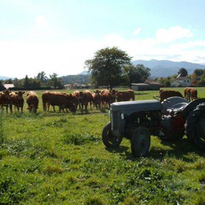 L'alunissage des tracteurs de la William Deering