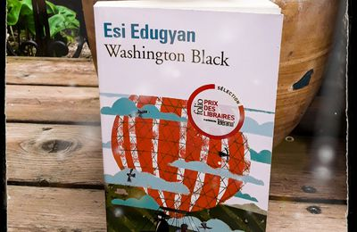 Washington Black, de Esi Edugyan