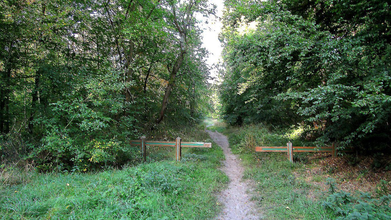 carrefour_Route Tournante du Grand Parc_Route de Granville