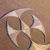 Crop Circle du 16 juillet au Nord de la France !