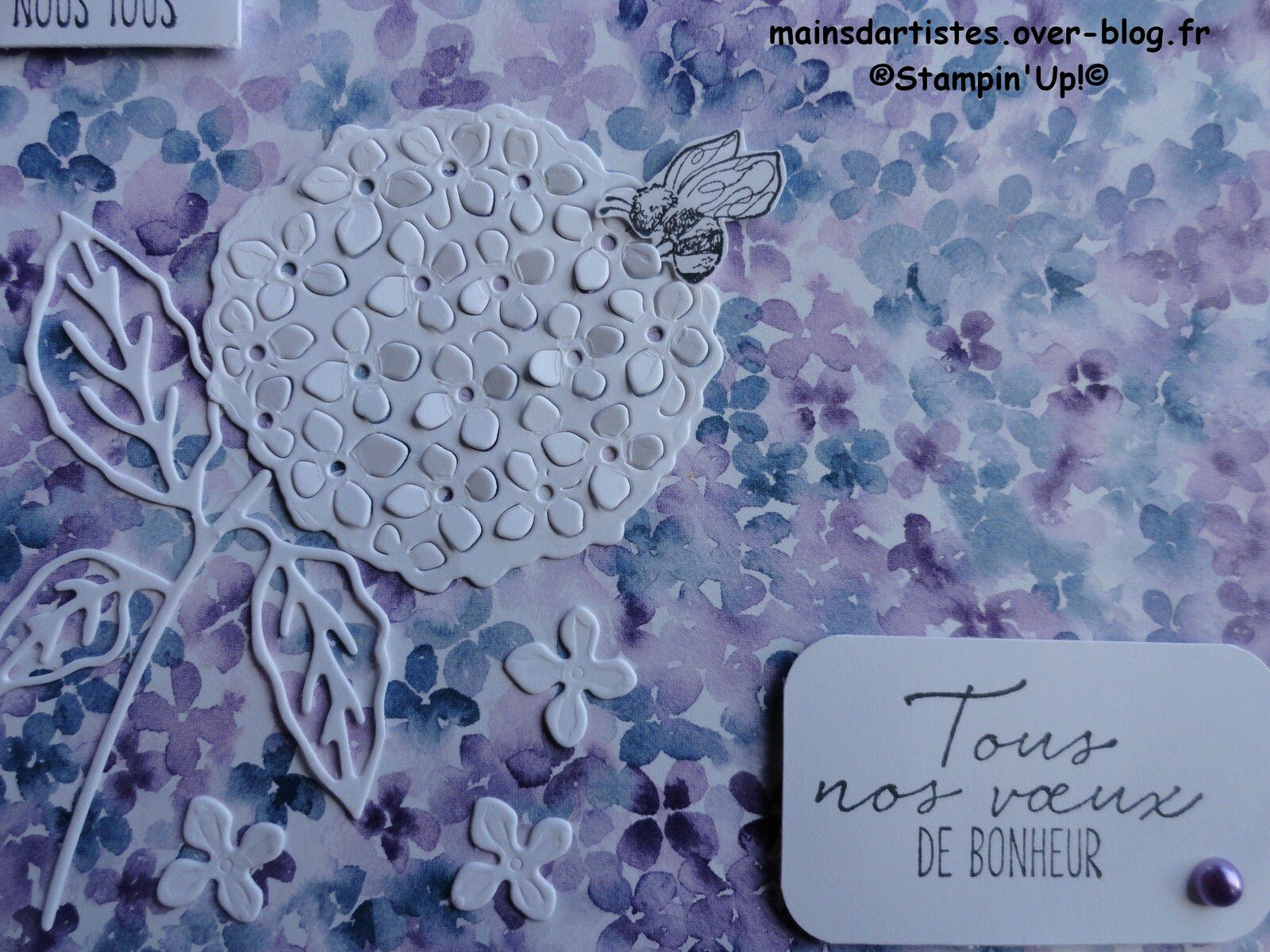 COLLINE D'HORTENSIAS,STAMPIN'UP!