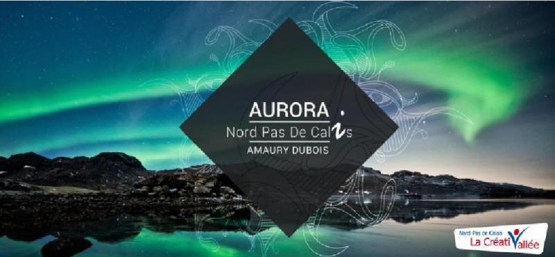 """""""AURORA""""...UN PROJET """"LAND ART""""...D'AMAURY DUBOIS..."""