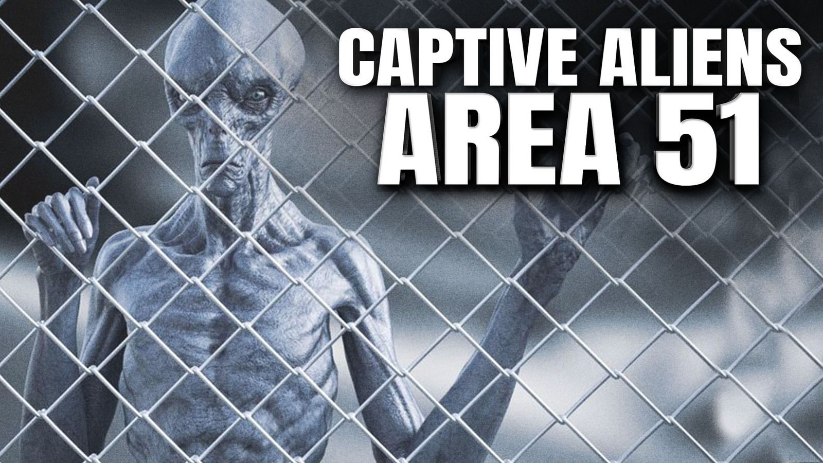 CAPTIVE ALIENS in Area 51 ? The KRILL Papers 👽