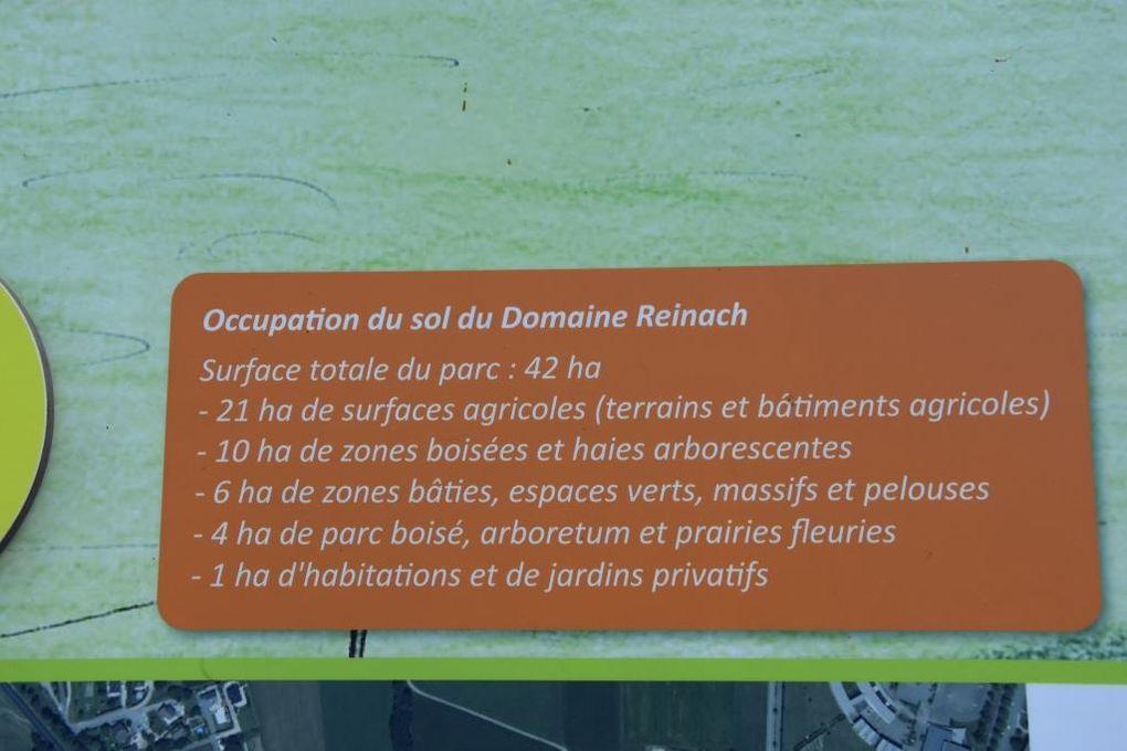 Rando Santé Savoie participation au Parcours du Coeur 2019