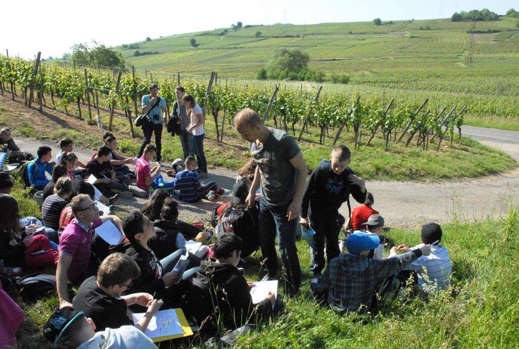 C'était le 22 mai, découverte des collines du Florimont, avec le collège Molière