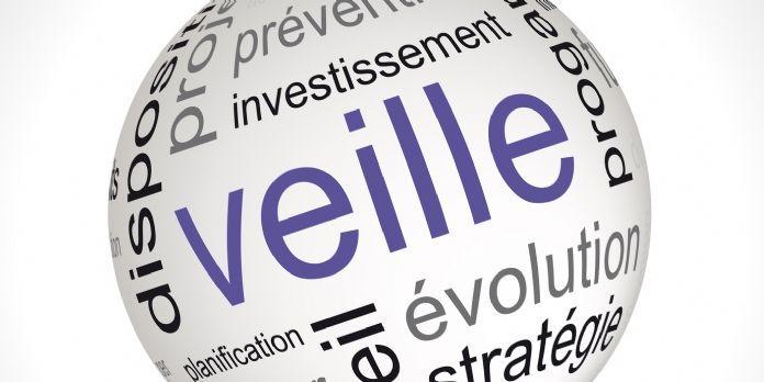 Roumanie 2021 veille information renseignement économique www.Sentinelle.ro