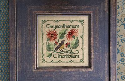 Botanical Stitches de The Drawn Thread