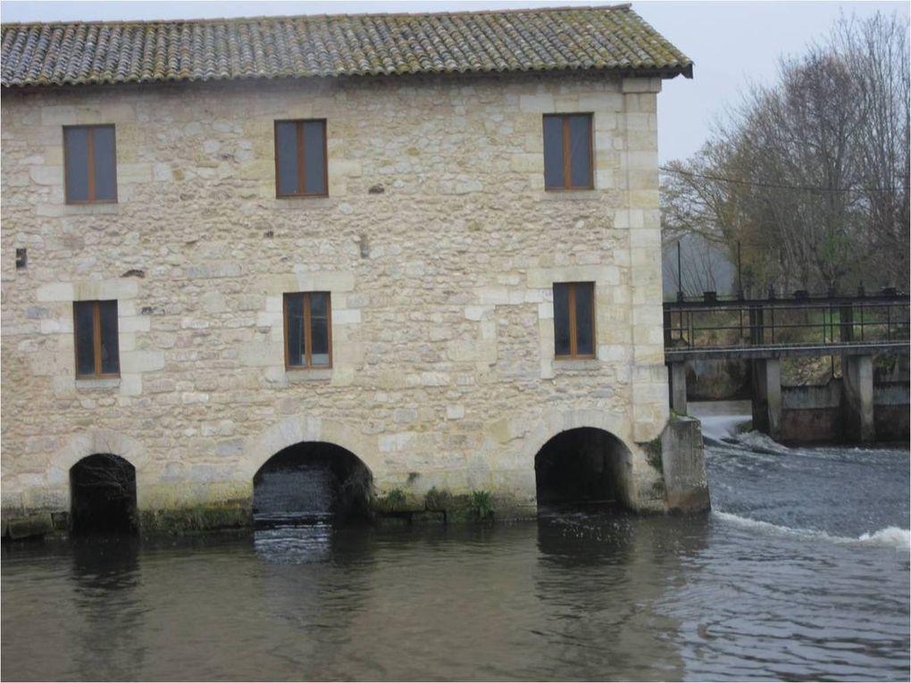 Bruges : le long des Jalles