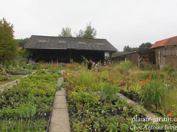 Le jardin-pépinière d'Antoine Breuvart