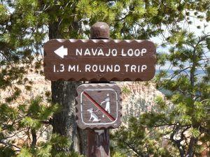 Bryce Canyon - Trail Navajo Loop