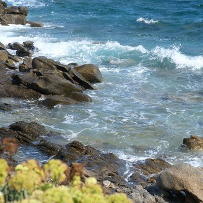 Cap sur la Méditerranée à la Toussaint ?