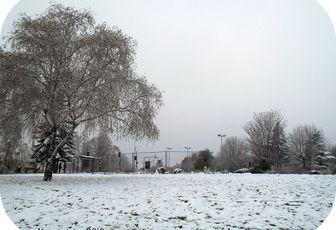 White and white ...