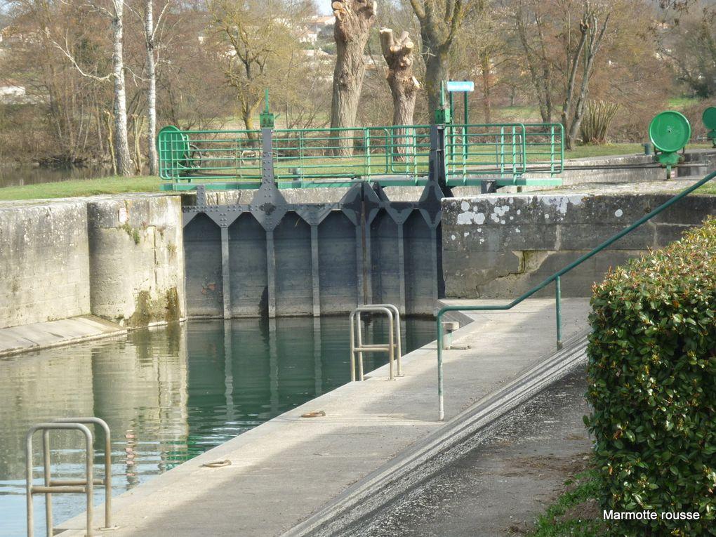 Au-fil-de-la-Charente