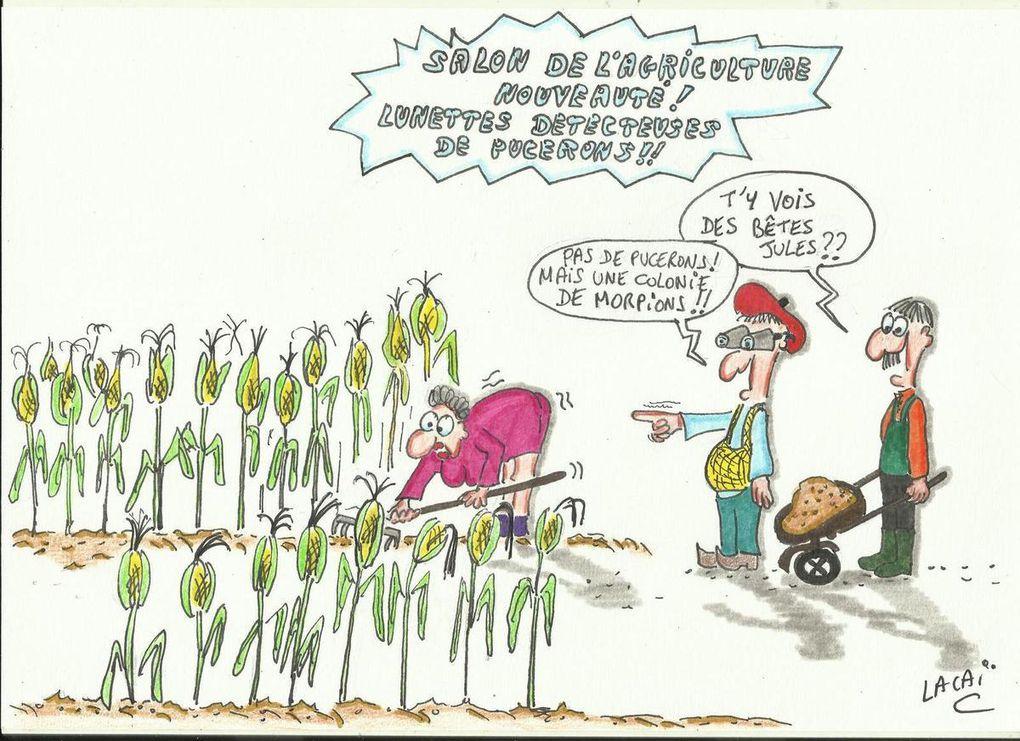 Mes rosiers et la reproduction des pucerons (poème chti en option)