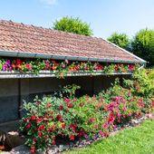 Le fleurissement 2021 de MADONNE-ET-LAMEREY - Photographies VOSGES en PLAINE