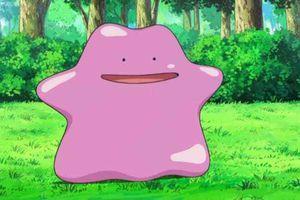 """""""Un secret par jour dévoilé pour Pokemongo"""", astuces échangées à l'école et sur le web"""