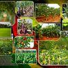 Le kit complet pour la nouvelle agriculture ?