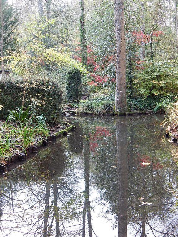 Jardin Arboretum des Ilex -Pres-de-Culands