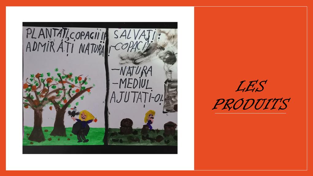 CLM La nature - mon amie - Roumanie, primaire