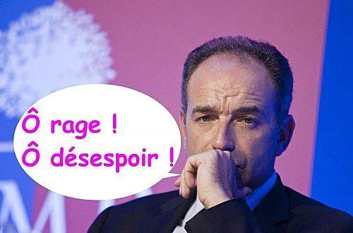 Après avoir fustigé les primaires socialistes et citoyennes ; l'UMP fait ses primaires...