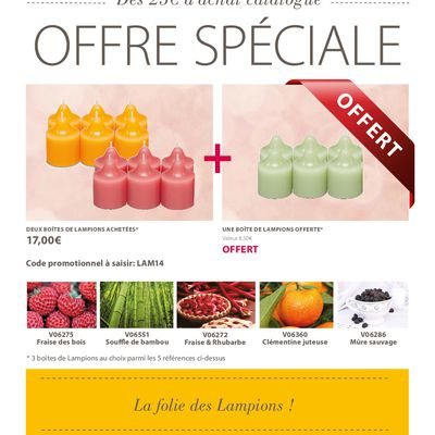 Offre lampions