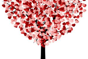Ma Wishlist pour la St Valentin 2016 !