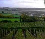 Parlons vin, parlons Bretagne.