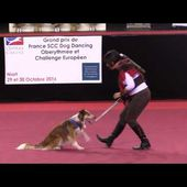 2016 Galatée & Coco - Grand Prix France Dog Dancing