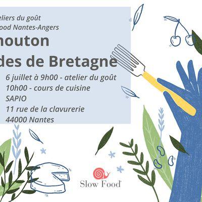 Atelier du goût Slow Food et Sapio : Mouton Landes de Bretagne