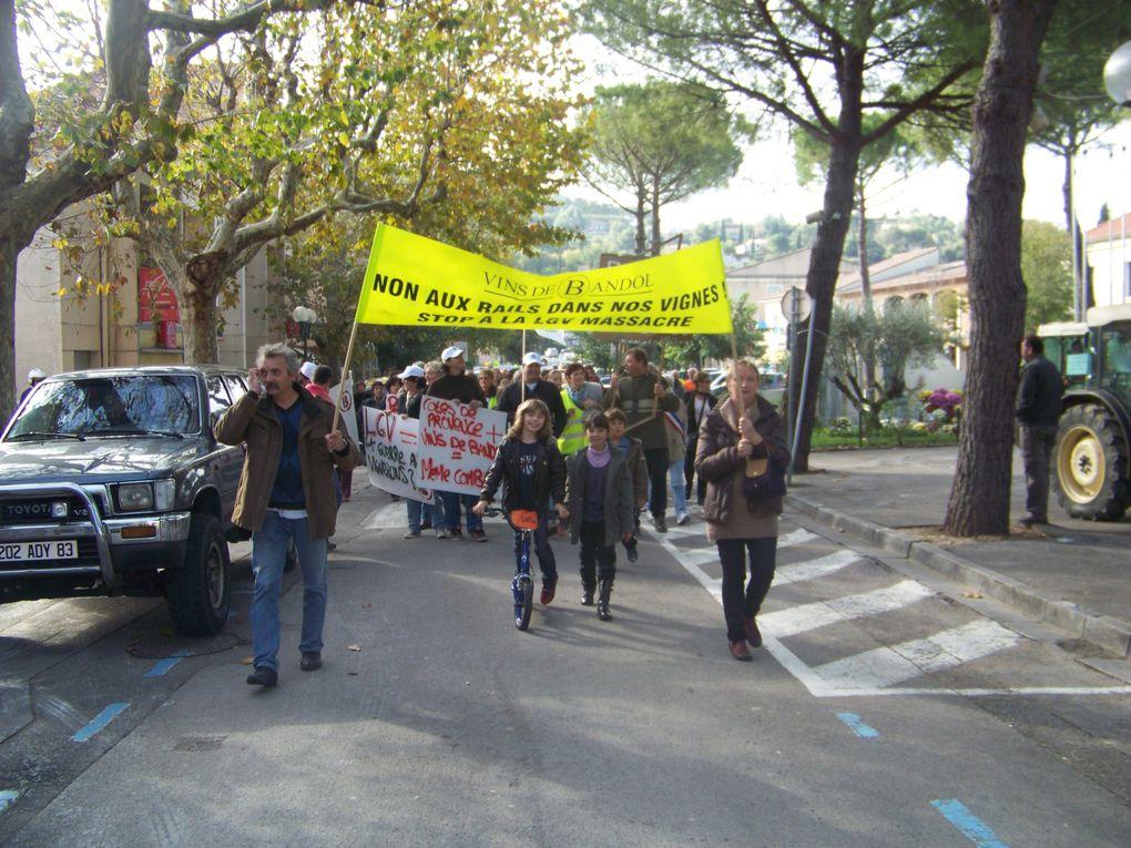 Manifestation anti LGV du 12/11/2011