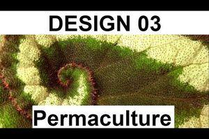 Design en permaculture 03 (motifs naturels)