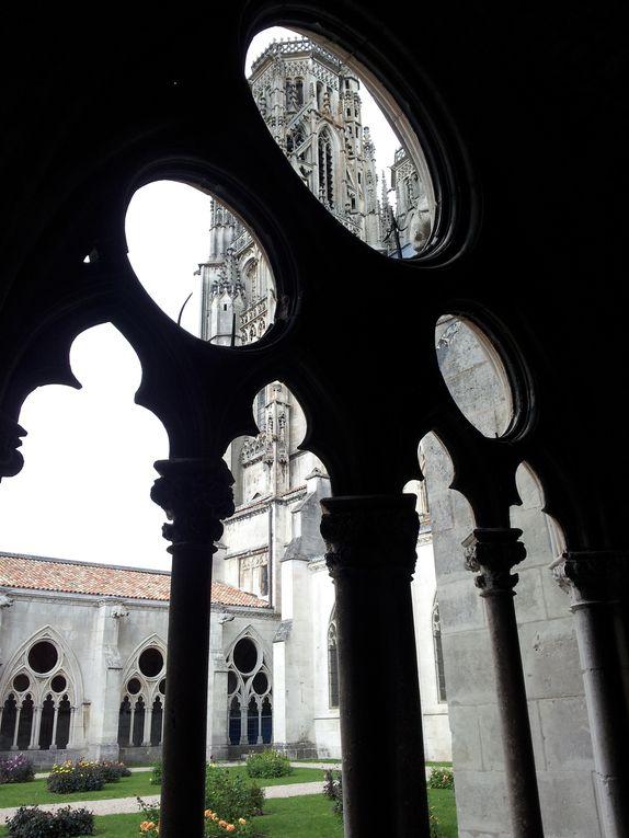 La cathédrale sous tous les angles et à toutes les saisons (©Stéphane Godet)