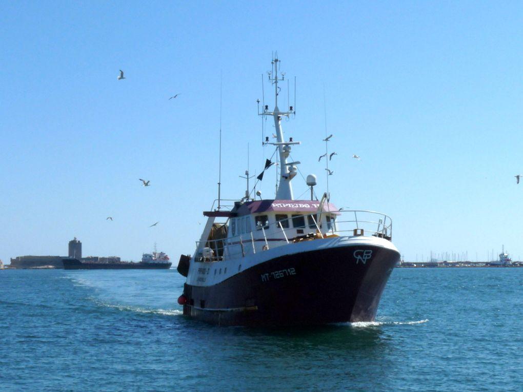 PAPHIDO  II , MT726712 , arrivant au port à Port de Bouc le 24 juin 2015