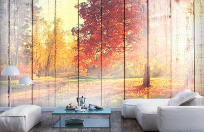 Herbstdeko: nicht nur bunte Blätter