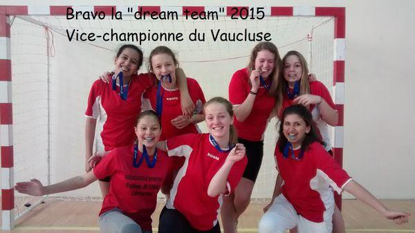 Championnat départemental de Handball...
