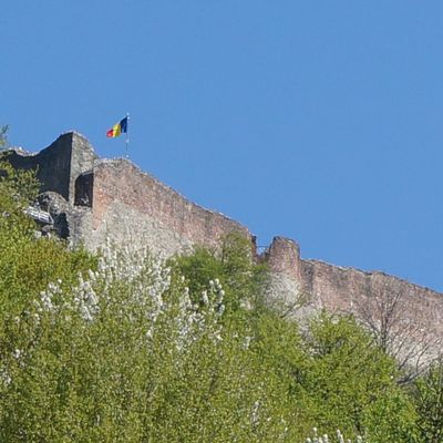Poenari : le château de Vlad III !
