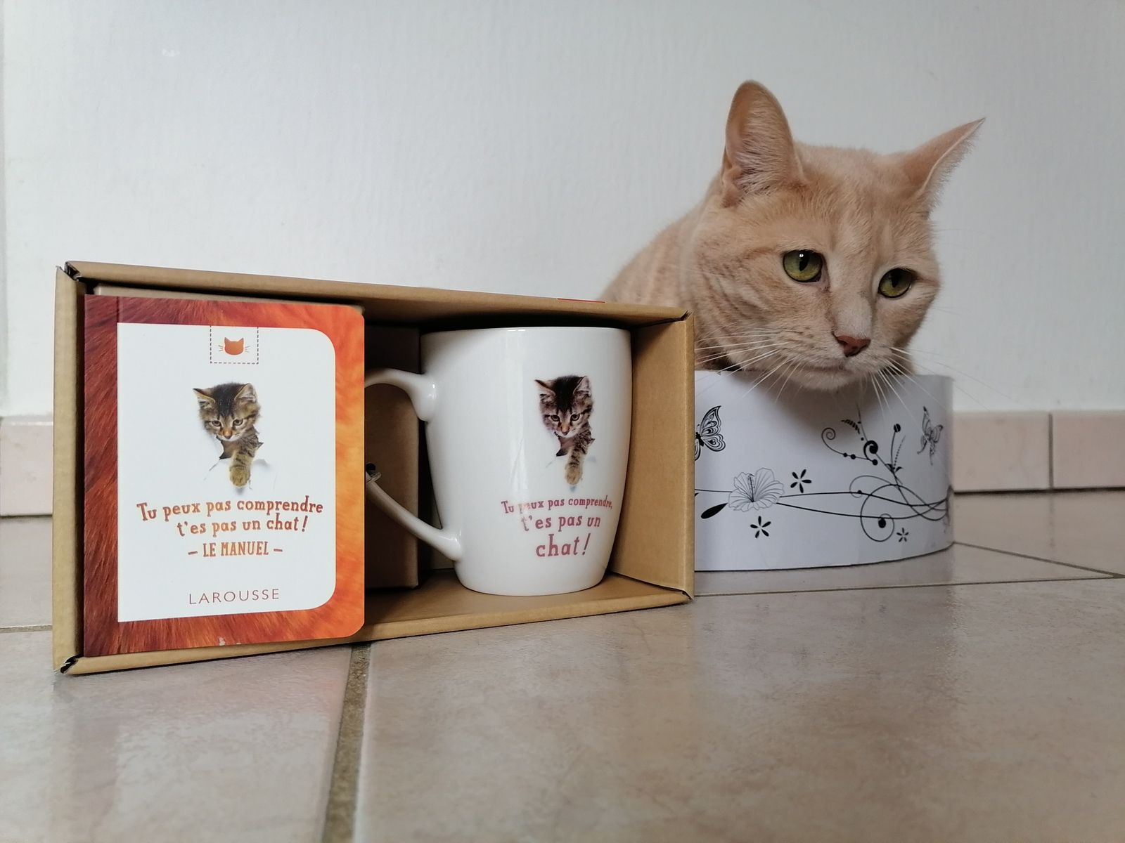 Coffret chat Larousse