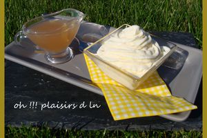 Glace vanille et son sirop de rhubarbe