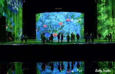 Expo aux bassins de Lumières de Bordeaux