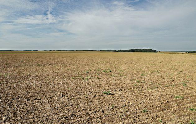 Pas d'avenir alimentaire sans sols fertiles et nourriciers, et pourtant on les sacrifient de diverses manières.