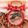 Dites stop aux moustiques et autres insectes
